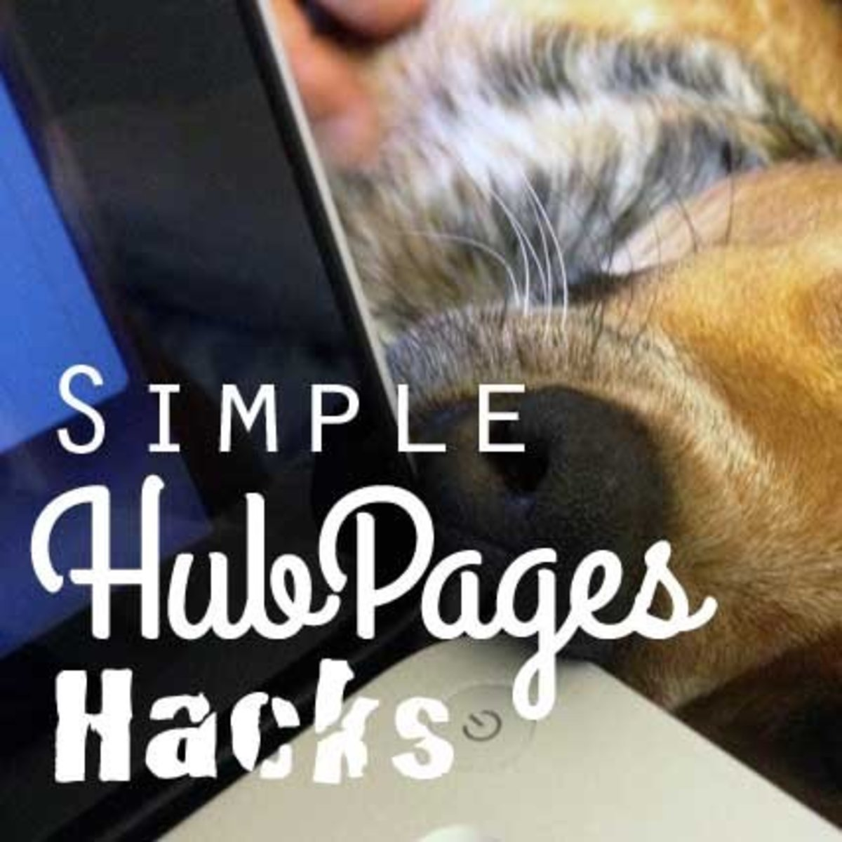 Simple Hubpages Hacks