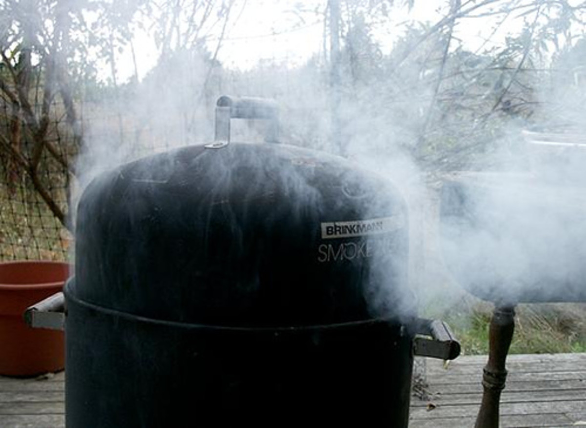 The Wonderful World Of Barbeque: BBQ, Offset Barrel Smokers, Outdoor Cooking Tips And More