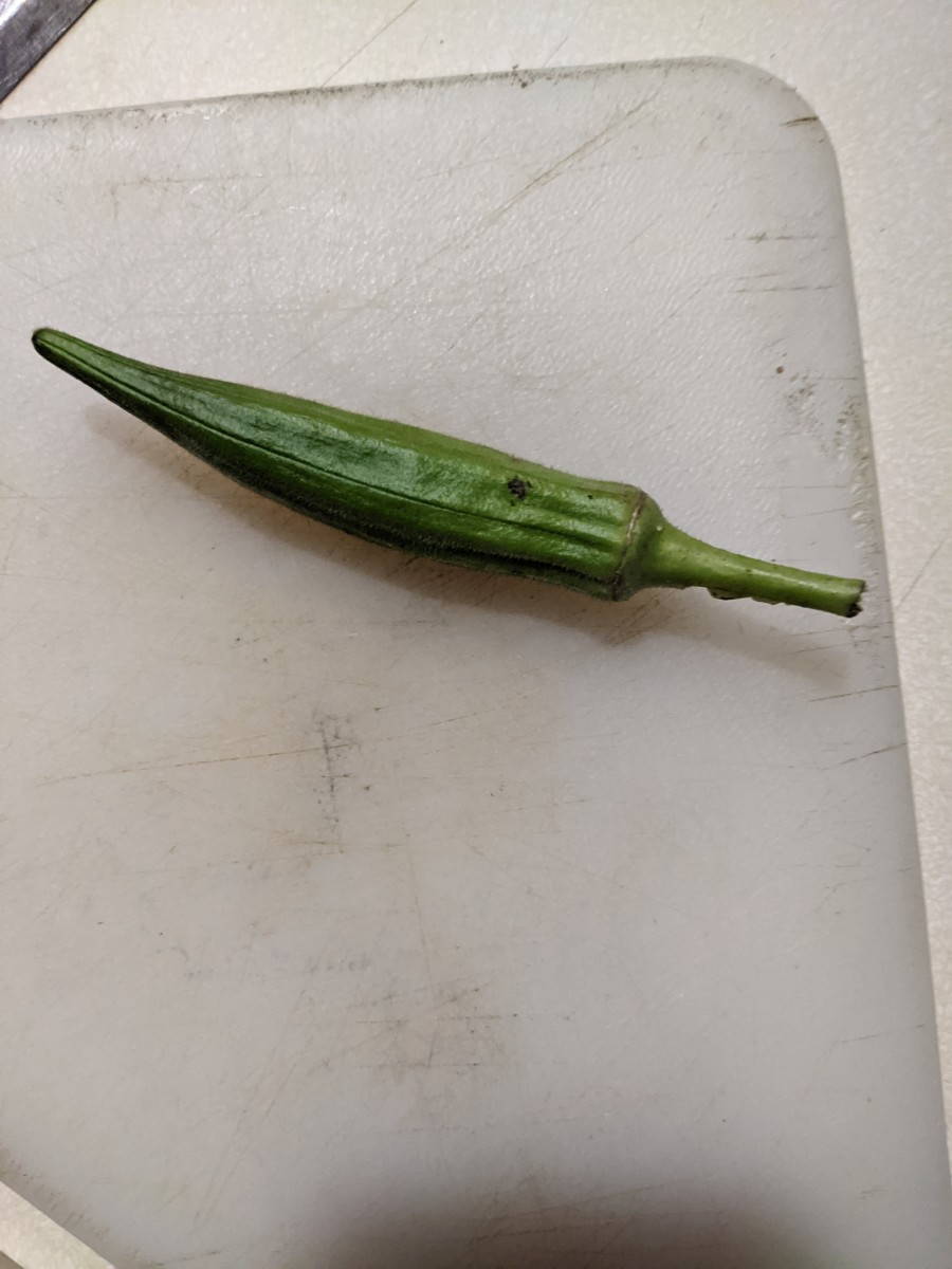 okra-pan-fried-and-slime-reduced