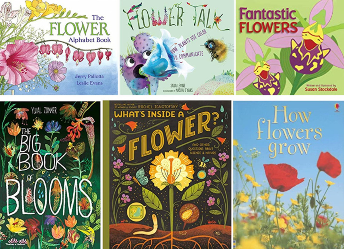 Our Favorite Children's Picture Books on Flowers