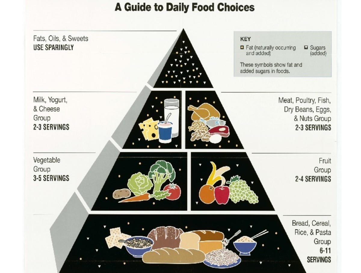 What Is a Food Pyramid? Has It Made Us Fatter?