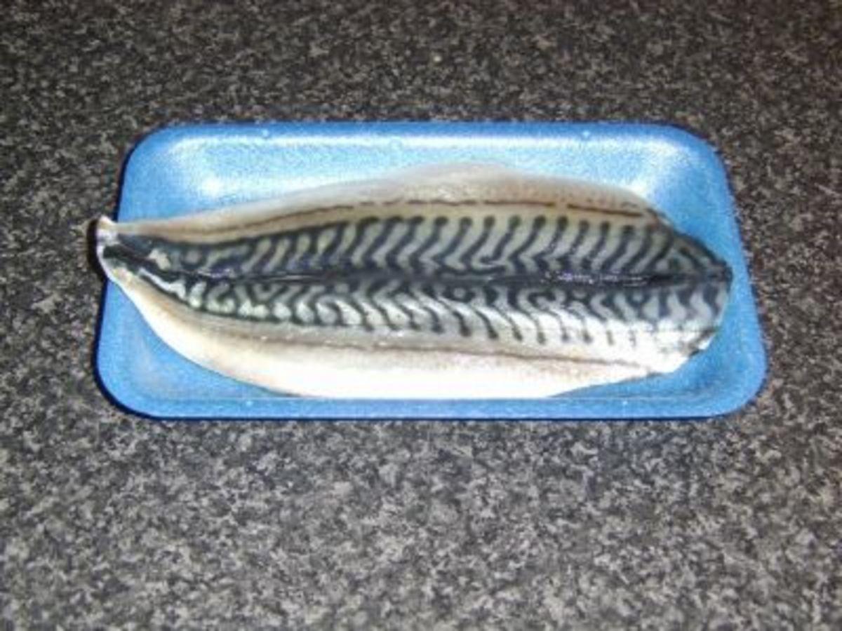 Fresh mackerel fillet