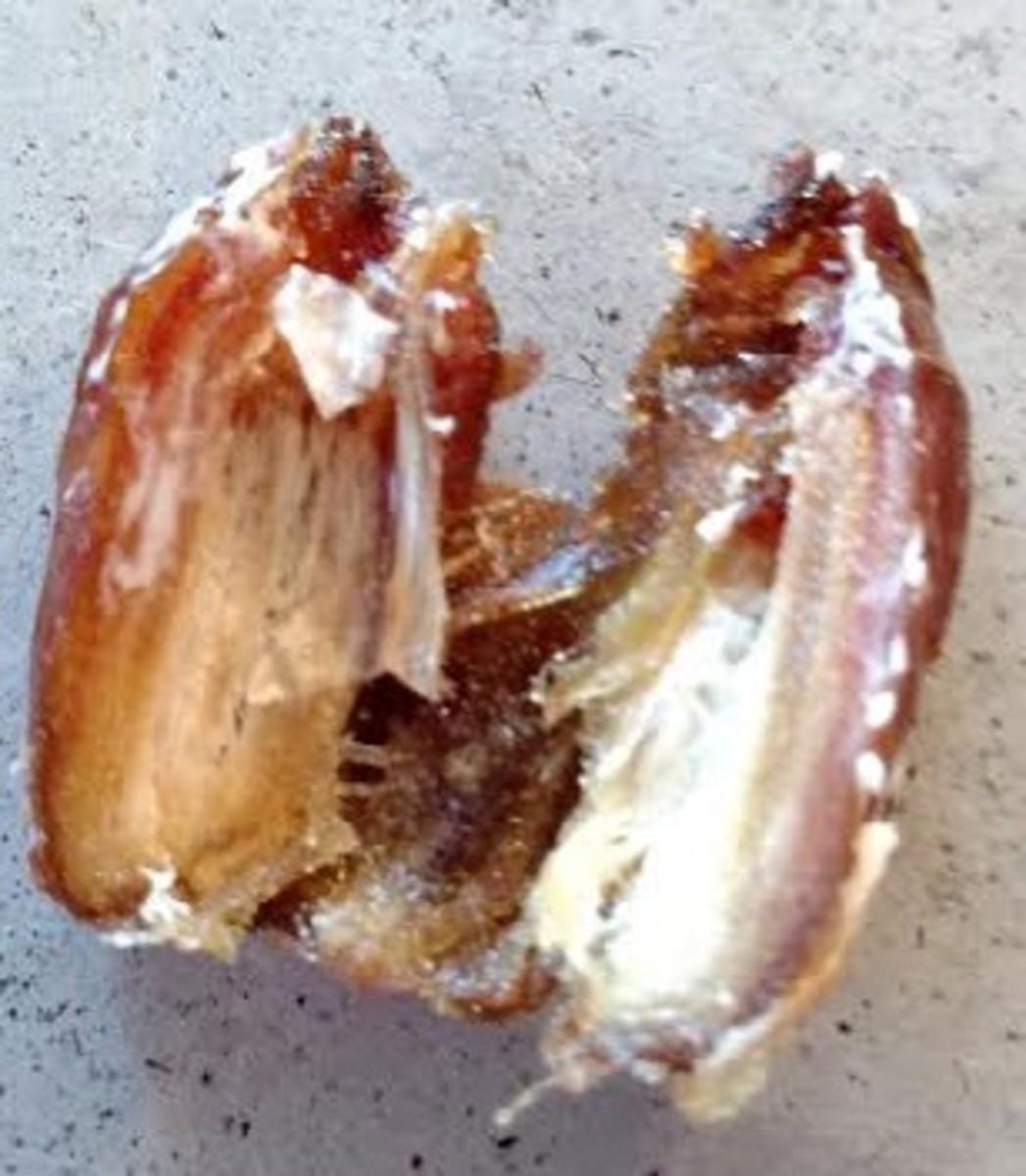 Slice date or fig in half