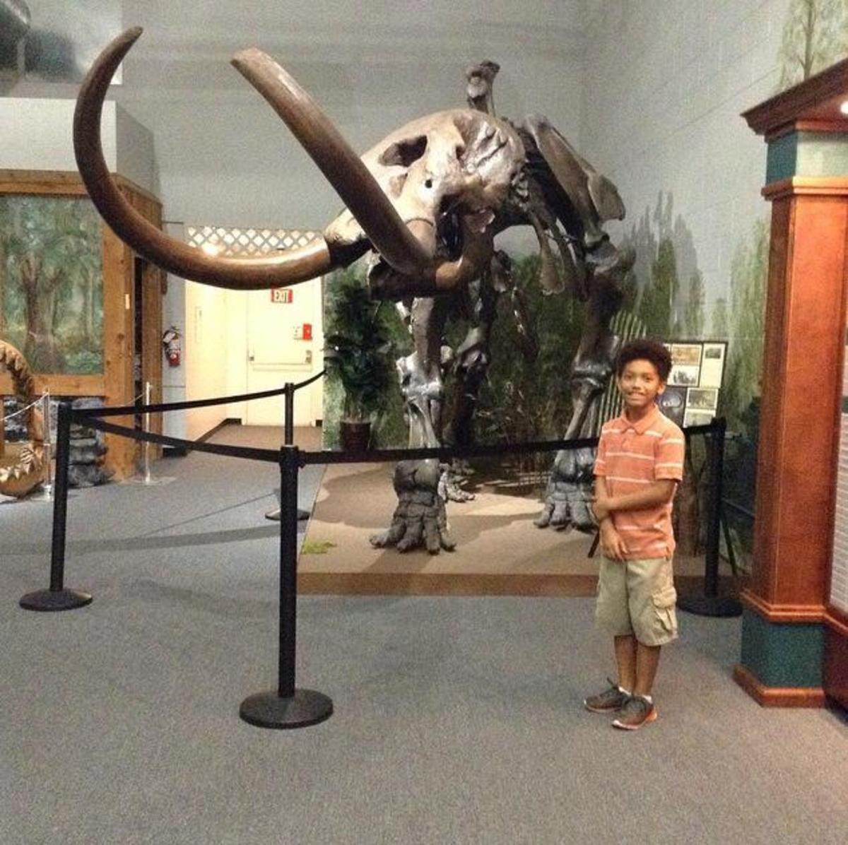 My youngest son and I visited the Brevard Museum of History & Natural Science in Cocoa, Florida over the Summer break.