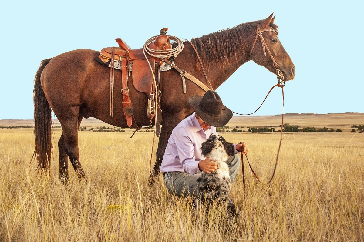 Dogs are a cowboys best friend.