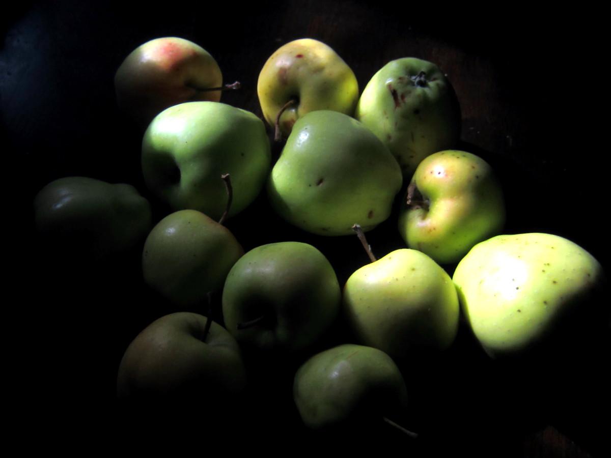 Apple Pie (Sugar Free) & Apple Sauce Recipes