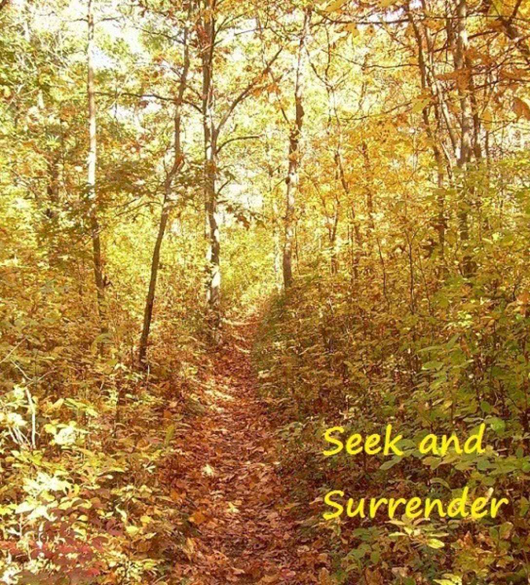 seek-and-surrender